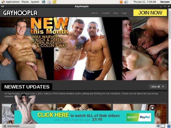 Gay Hoopla 암호