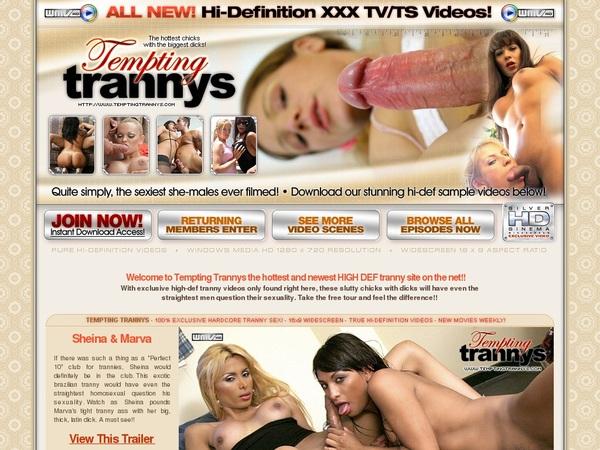 Tempting Trannys Premium Pass